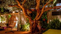Guava-Tree-Table-and-Living-Wall-Ryan-Benoit-Design-2013-RMB_6488