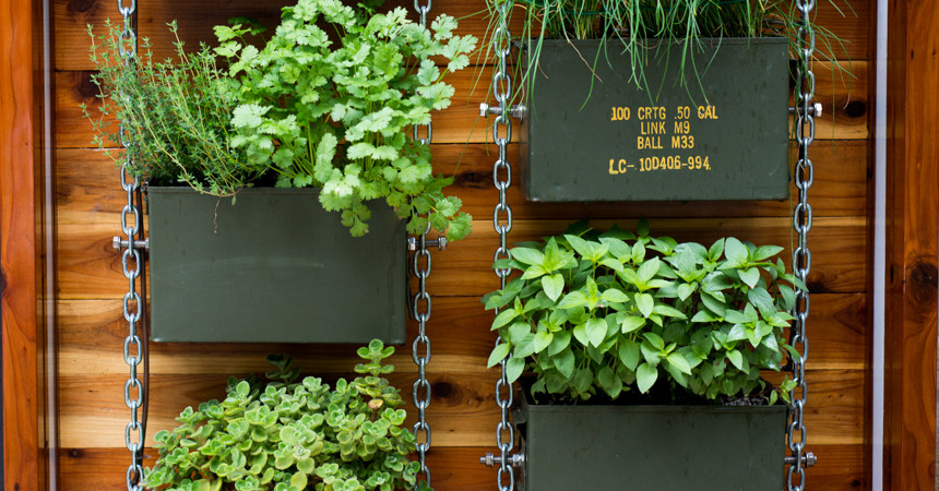 Ammo-Can-Vertical-Herb-Garden-Ryan-Benoit-Design-2013-RMB_6146