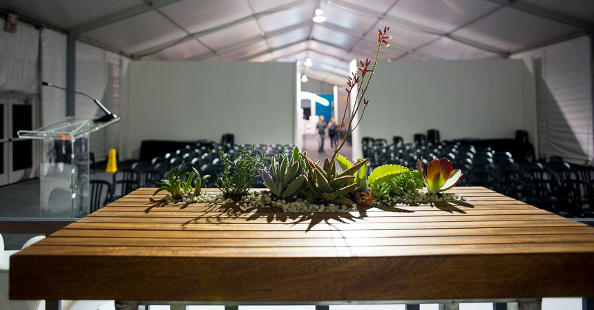 WestEdge-Design-Fair-ryanbenoitphoto-thehorticult-RMB_9819