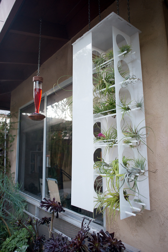 Acrylic Tillandsia Tower - Ryan Benoit Design