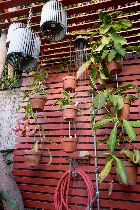 Vertical-Clay-Pot-Garden-Ryan-Benoit-Design-RMB_1755